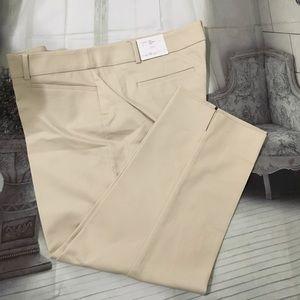 Loft pants size 18P